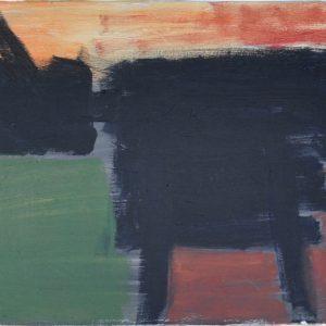 Zwarte Koe